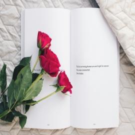 Hoy nos llenamos aún más de color y teñimos el día con rosas rojas 🌹, viajamos por un mar de libros 📖 y lo aderezamos con un toque de amor incondicional para quienes más queremos…❣️¡Feliz Sant Jordi!  #DimefarForYou